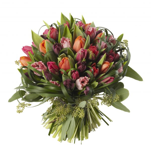 Mixed Tulip Dome